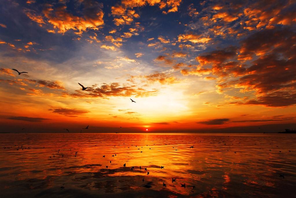夕日 サンセット