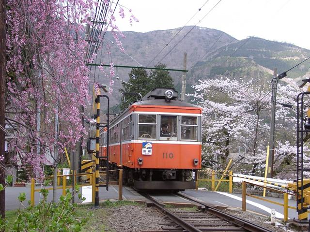箱根 旅行